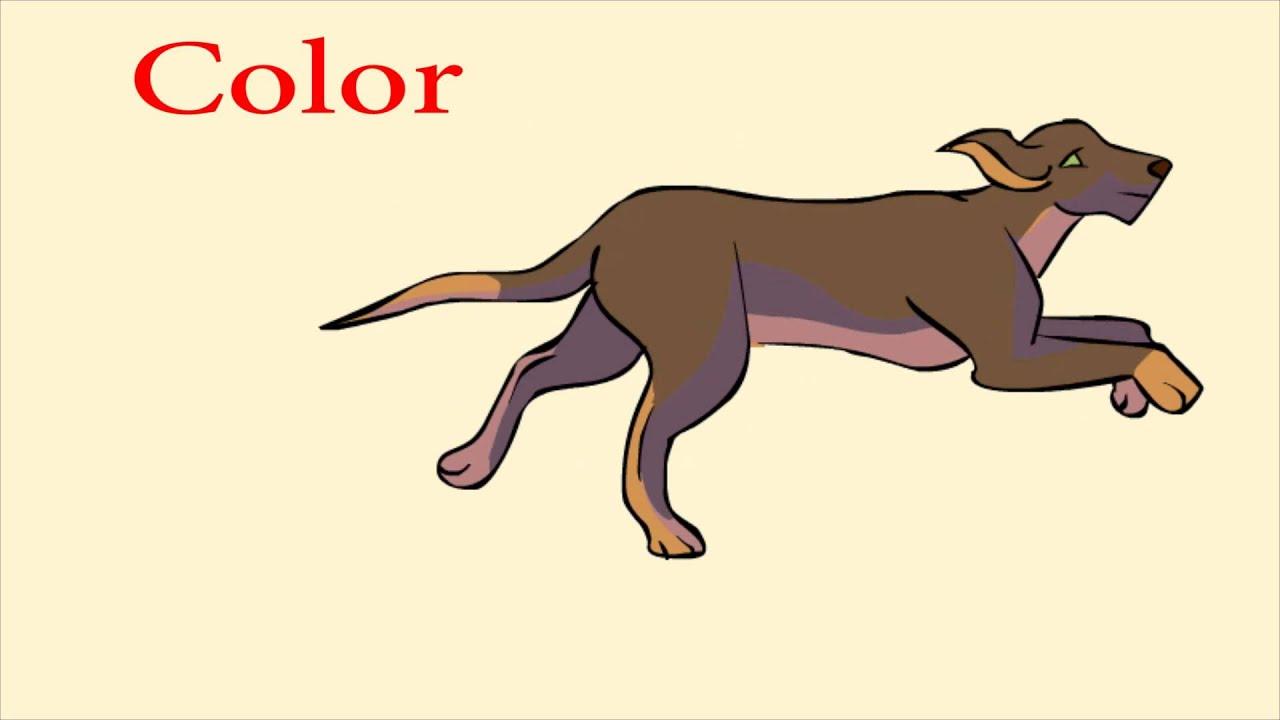 animated dog run cycle process youtube