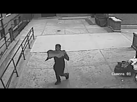 Morrisania Groping Suspect