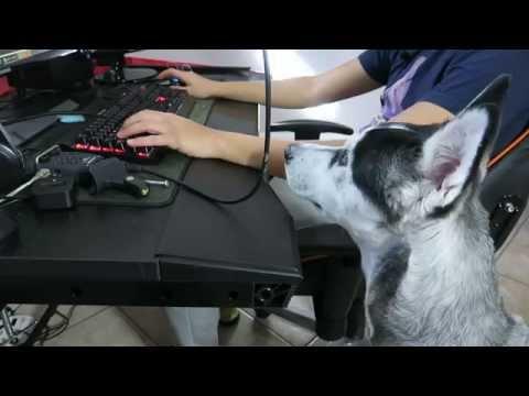 Aietech #5: Un bureau gaming DXRacer