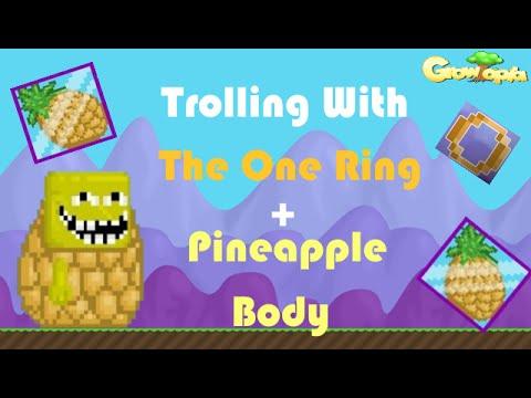 Pineapple Ring Growtopia