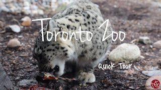 Quick Tour of Toronto Zoo in Winters, Dec 1
