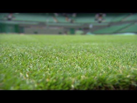 Wimbledon grass prepped for tennis season - YouTube