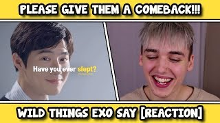 Video THINGS EXO SAY THAT SEEM LIKE FAKE SUBS BUT AREN'T REACTION download MP3, 3GP, MP4, WEBM, AVI, FLV Agustus 2018
