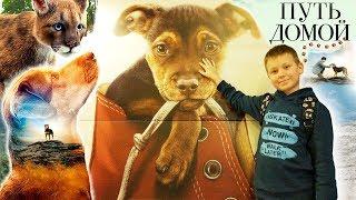 ПУТЬ ДОМОЙ 2019 Семейный фильм про собаку БЕЛЛА Смотреть ОБЗОР A Dog's Way Home Наши слезы УМИЛЕНИЕ