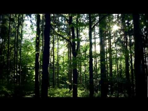 Musikfest Erzgebirge 2012 - Offizieller Trailer