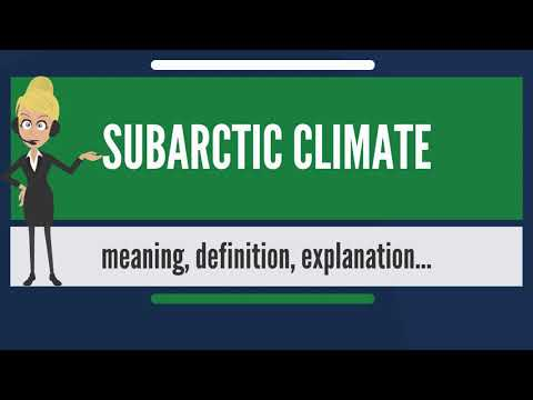 What is SUBARCTIC CLIMATE? What does SUBARCTIC CLIMATE mean? SUBARCTIC CLIMATE meaning & explanation