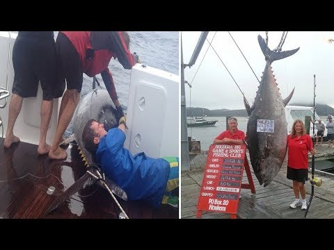Fisherwoman catches world record 411.6kg TUNA worth $2m or 1769 tins after 4hr battle - New Zealand
