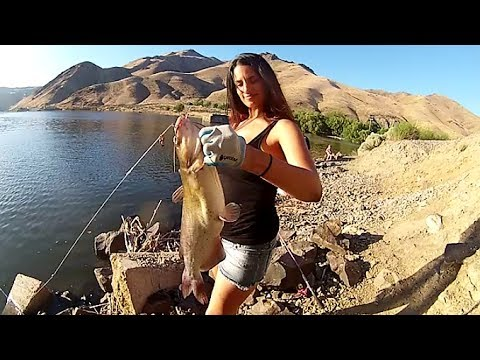 Catfishing the snake river using mormon crickets steck for Fishing with crickets
