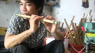hướng dẫn thổi bài : LÁ DIÊU BÔNG :  www.saotruc.vn