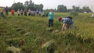 Farm Tour Vietnam & Cambodia for South Dakota State University Student Group