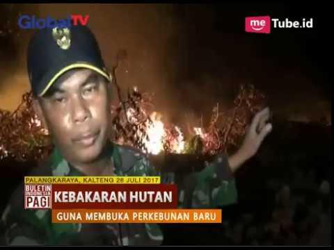 Terjadi Lagi, Kali Ini 6 Hektar Lahan Gambut di Palangkaraya Terbakar - BIP 27/07