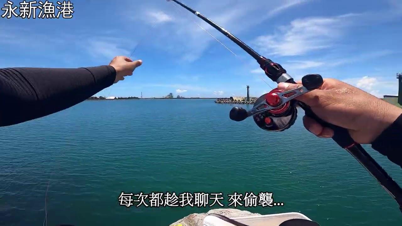 高雄 永新漁港 一堆魚球 釣不了 當個撈魚手 神救援 #高雄 #永新漁港