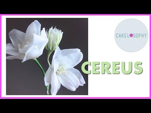CEREUS Flower: Making Life-Like Flowers out of Cold Porcelain or Gumpaste