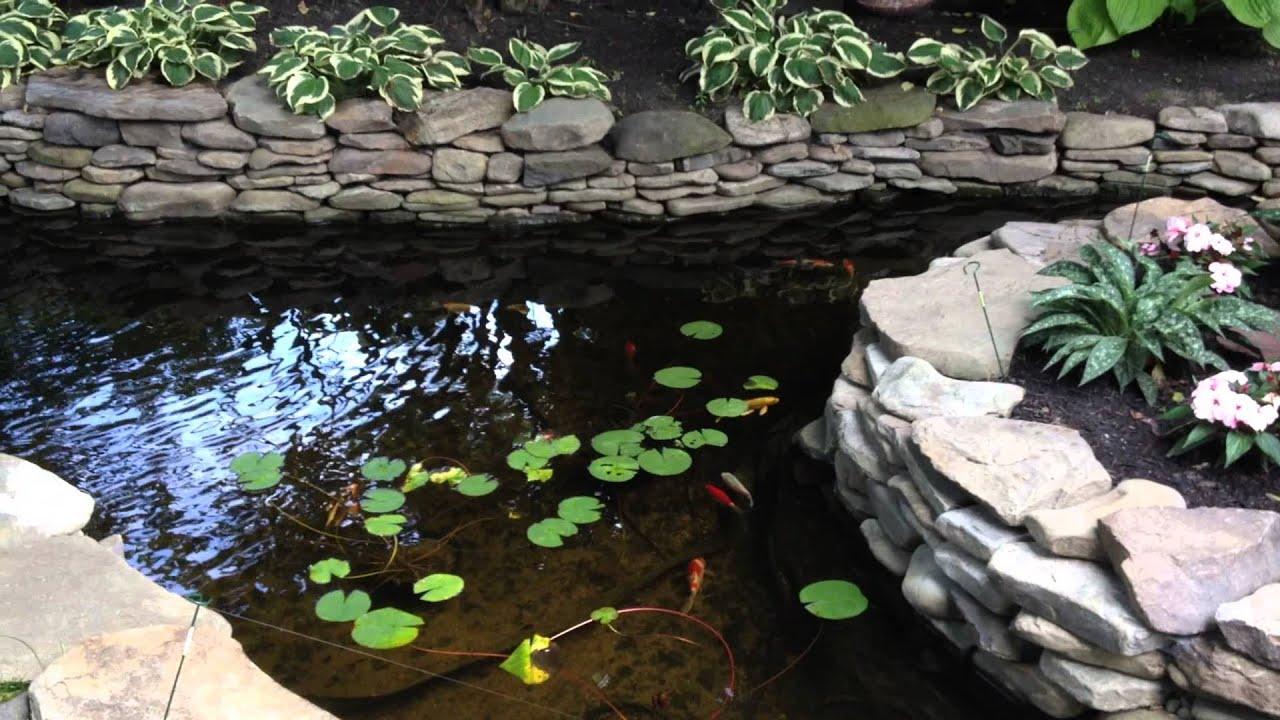 Backyard Waterfall And Koi Pond Buffalo Garden Walk 2014 Youtube