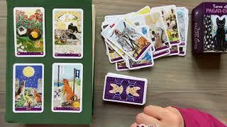 Смотрим мои новые карты для гадания Pagan Cats Tarot. Flip Thru. Обзор колоды Языческие Коты. Таро