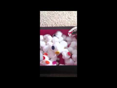 cotton-ball-activity