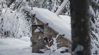 Bushcraft BIRCH BARK Walls! - Building a Long-term Camp   Entry: 007 - Camp Firlend