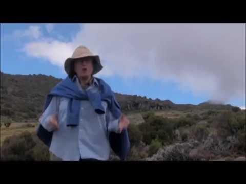Cultural Vacations & Safaris   Tanzania   Arusha National Park   Climbing Kilimanjaro
