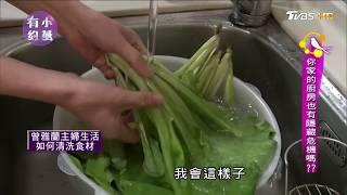 蔬果怎麼洗才安心? 譚敦慈教這妳步驟,農藥不下肚 小燕有約
