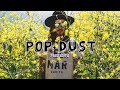 Popdust Presents | Cisco Adler
