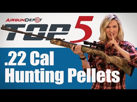 Top 5: .22 Cal Hunting Pellets