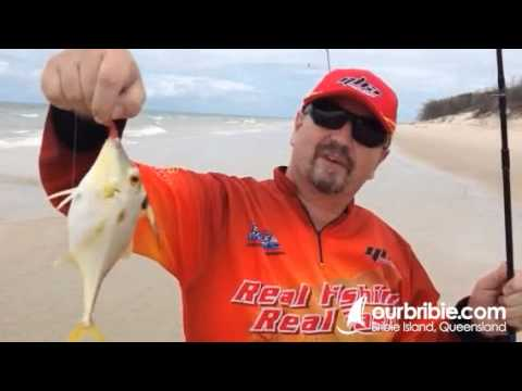 how to get to chinchilla from bribie island