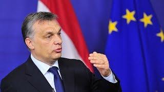 SophieCo. Восточная Европа требует перемен в политике ЕС