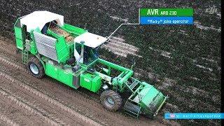 Zbiór ziemniaków u Wojtka kombajnem AVR ARB 230