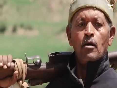 """Abera"" ኣፍራዪ  ባህላዊ ጉዳያት ህግደፍ  New Eritrean Musical short film"