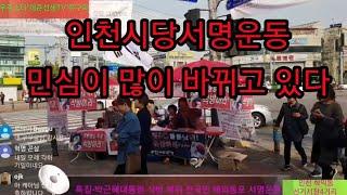 특집-박근혜대통령 석방 복위 전국민 해외동포 서명운동