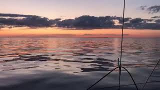 Levée de soleil en mer / Drheam Cup