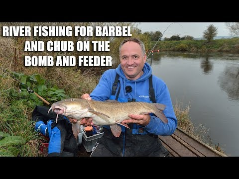 River Fishing For Barbel On The Bomb And Feeder