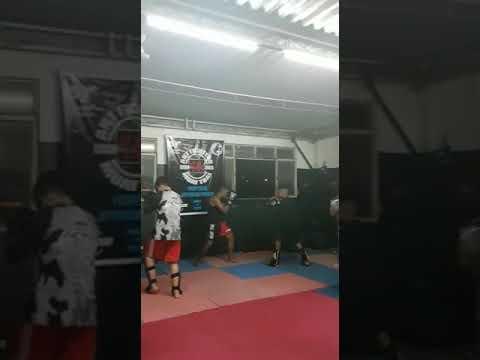 Prof-Jhonny pitbull ART FIGHTERS