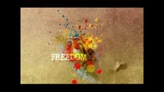 Baixar We are the free - Matt Redman ( Letra en Español )