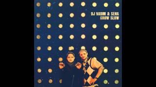 DJ Vadim & Sena - Living In The New