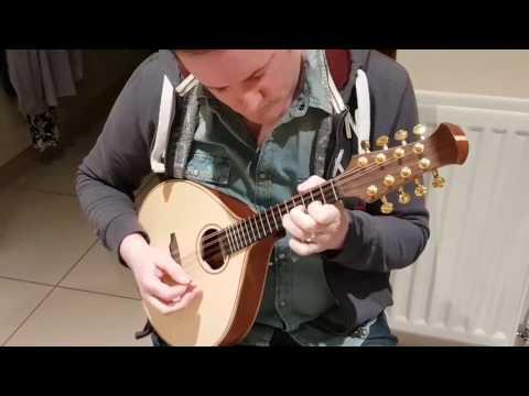Siveen large body custom mandolin