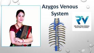 Azygos Venous System By Dr. Rajitha Vanga