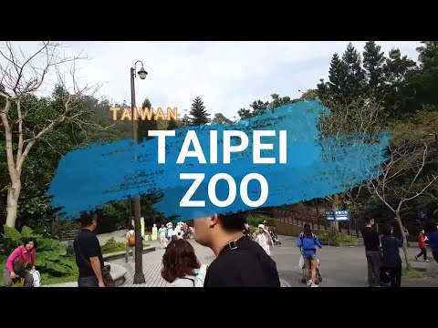 You Should Experience Taipei Zoo And Here's Why