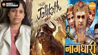 'Jallikattu' goes to the Oscars, regional cinema aids theatres