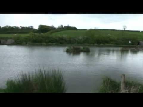 Hazel Court Cat Fishing Recky