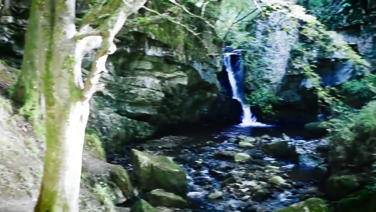 The Falls of Tarnash, Woodland Walks & Waterfall, Keith, Moray Scotland