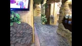 Prehistoric Pets/ The Reptile Zoo Walk Thru
