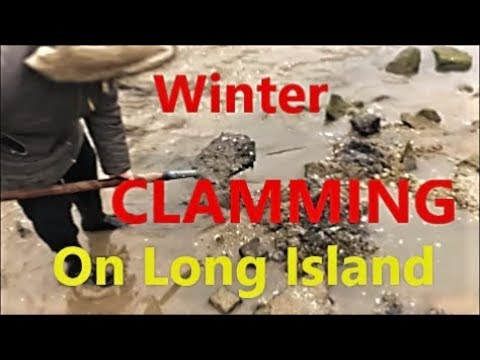 Winter CLAM Catch And Cook: Long Island