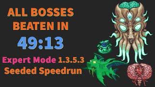Expert All Bosses in 49:13 - Terraria Seeded Speedrun RTA