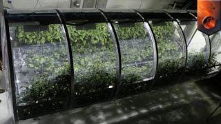 NASA Mengambangkan Rumah Kaca Untuk Kehidupan Di Bulan Dan Mars - Tomonews