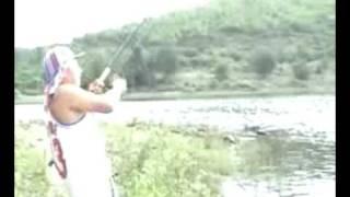 ตกปลาแรด-แก่งกระจาน Fishing (Giant gourami)