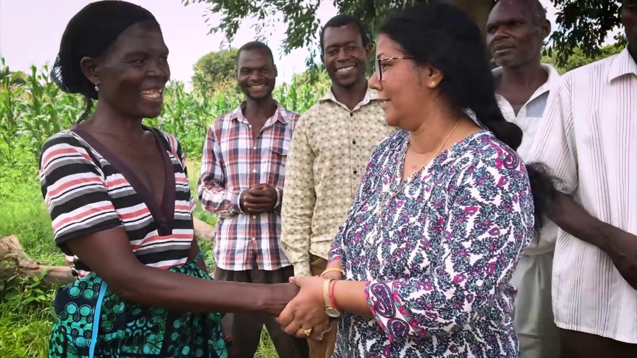 Making conservation profitable for small-scale farmers in Zambia