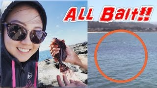 HUGE Bait Balls Everywhere! Catching Live Bait from Shore (Jetty)