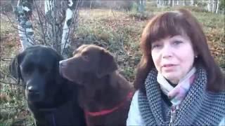 Отзыв от кинолога, инструктора служебных собак - Ирины Думанской. Дрессировка собак.(Отзыв о курсе