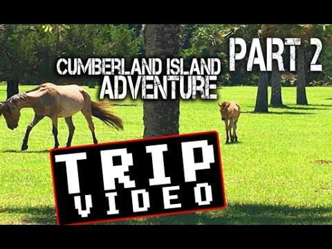 Part 2 of 3 Cumberland Island Adventure - Hammock Camping